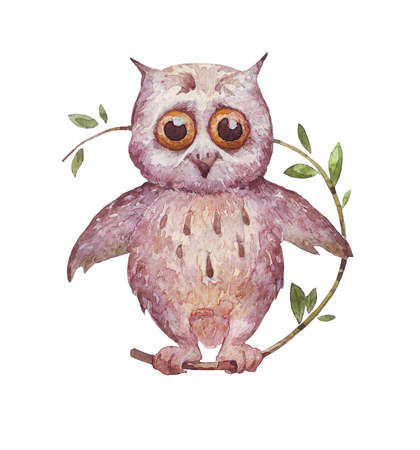 An owl sitting on a branch Isolated over white watercolor illustration