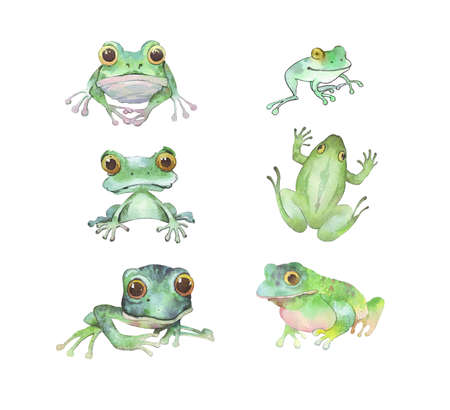 set of watercolor frogs