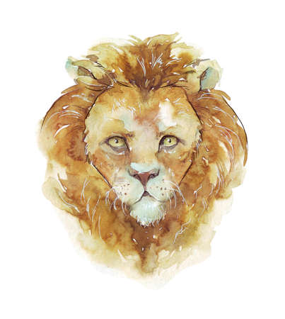 watercolor lion portrait isolated on white
