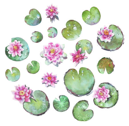set of waterlilies watercolor illustration isolated Stock fotó