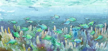 fish stock swimming in the ocean watercolor illustration