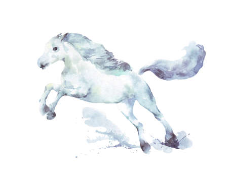 white horse running watercolor illustration