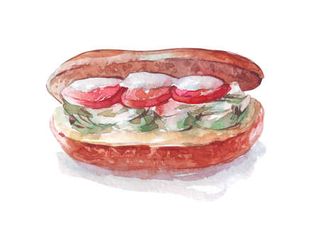 sandwich with tomatoes watercolor art isolated