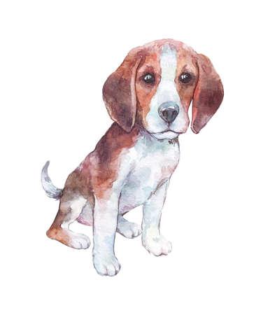 Cachorro beagle aislado en blanco acuarela arte