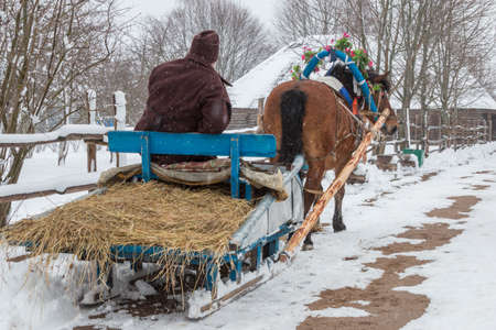 horse sleigh: After celebrating St Valentines Day in the Belarusian village the horse was carrying an old man on a wooden sledge home horse decorated with flowers road and roofs of houses in the snow a winter trees without foliage wooden fence.