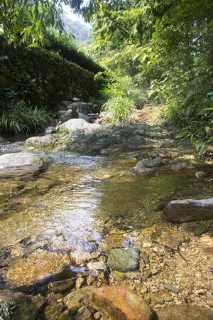 riparian: River