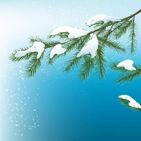 xmas tree: Vector illustration of christmas tree background