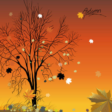 The illustration of autumn background with fallen leaves Stock Vector - 25467923
