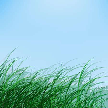 The illustration of  beautiful green grass