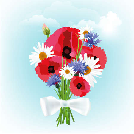 daisy wheel: The illustration of beautiful bouquet. Vector image.