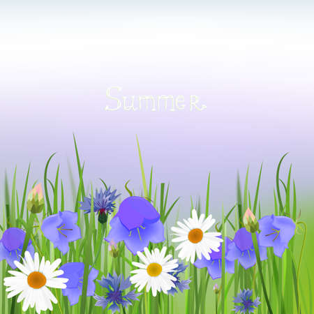 The illustration of beautiful cornflower and bellflower background  Vector image