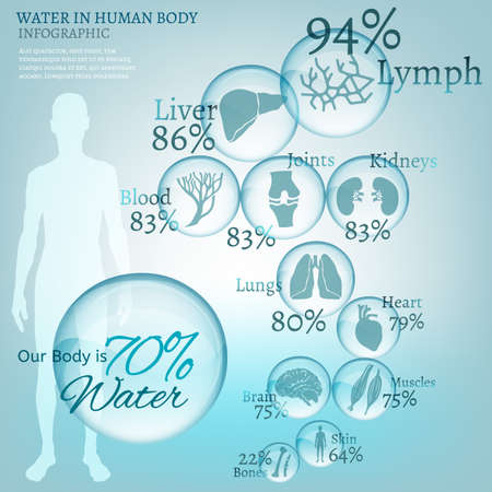 absorb: Water is the driving force of all nature. The illustration of bio infographics with human body organs icons in transparent style. Ecology and biochemistry concept. Drink more water. Vector image.