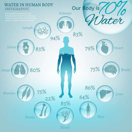 body: Water is the driving force of all nature. The illustration of bio infographics with human body organs icons in transparent style. Ecology and biochemistry concept. Drink more water. Vector image.