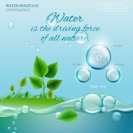 water molecule: El agua es la fuerza motriz de toda la naturaleza. La ilustraci�n de la infograf�a bio con la mol�cula de agua en estilo transparente. Ecolog�a y el concepto de la bioqu�mica. Concepto natural con la cita de la tipograf�a.