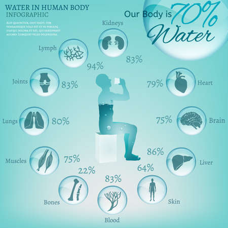 force of the nature: Water is the driving force of all nature. The illustration of bio infographics with human body organs icons in transparent style. Ecology and biochemistry concept. Drink more water. Vector image.