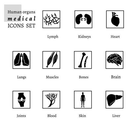 body parts: Vector editable collection of human body parts icons.  Blood in a black color. Useful for inforchart and infographic Illustration