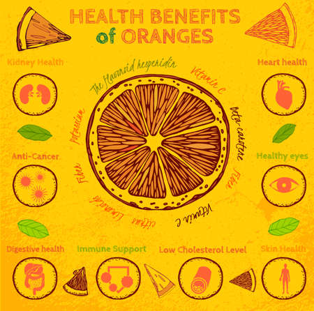 Graphic vector illustration of  beautiful hand drawn infographics with fresh oranges health benefits on a textured background in fresh and juicy style. Fresh juice for healthy life. Handmade concept.