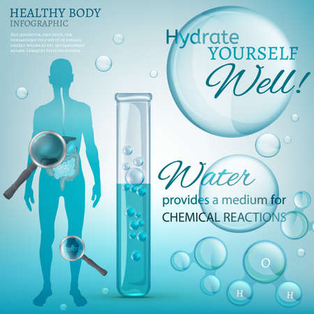 hydrate: Water is the driving force of all nature. Vector illustration of bio infographics with human body organs icons in transparent style. Medicine and biochemistry concept. Keep your body healthy Illustration