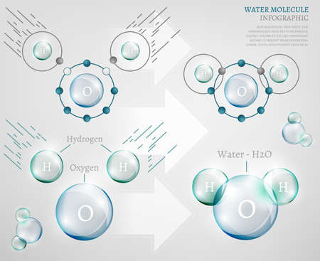 water molecule: The illustration of bio infographics with water molecule in transparent style