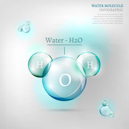 water molecule: La ilustraci�n de informaci�n bio gr�fica con la mol�cula de agua en estilo transparente Vectores