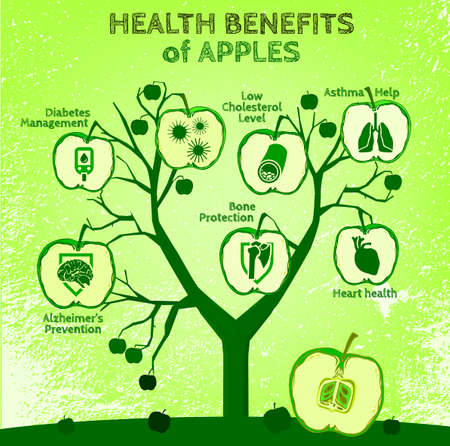 alzheimer's: Graphic vector illustration of  beautiful hand drawn infographics with apples health benefits on a textured background in fresh and juicy style. Fresh fruits for healthy life. Handmade concept.
