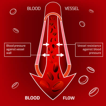 human blood circulation: illustration of blood pressure infographic. Abstract medicine concept. Useful for poster, indographics, placard, leaflet, brochure, print, book and advertisement graphic design. Illustration