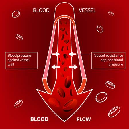 red blood cell: ilustración de infografía de la presión arterial. Resumen concepto de la medicina. Útil para el cartel, indographics, cartel, folleto, folleto, la impresión, el libro y el diseño gráfico publicitario.