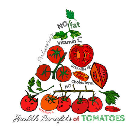 hale: Health benefits of ripe tomatoes. Medicine creative poster in hand drawn style on white background. Vector illustration made in orange, red and green colors.