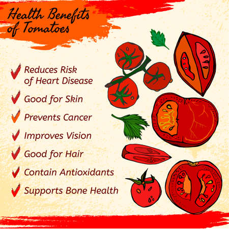 hale: Health benefits of ripe tomatoes. Medicine icons and elements in hand drawn style on a light textured background. Vector illustration made in orange, red and green colors. Illustration