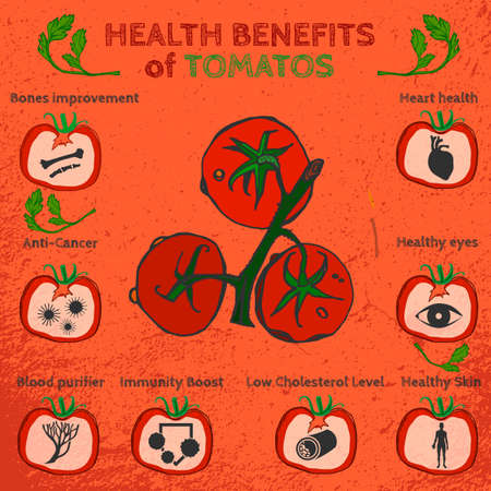 Health benefits of ripe tomatoes. Medicine icons and elements in hand drawn style on a textured background. Vector illustration made in orange, red and green colors. Illustration