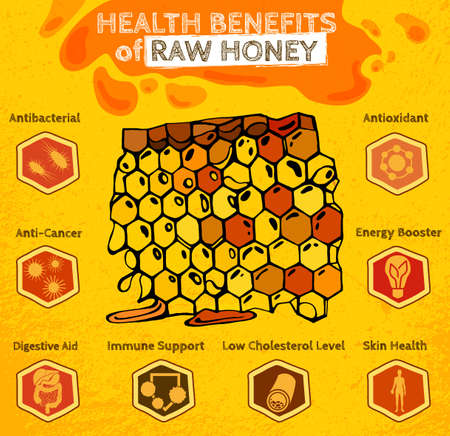 liquid gold: Health benefits of honey. Hand drawn artistic image in yellow, orange and dark brown colors. Editable vector illustration in unique style on a textured background. Healthy nutrition concept
