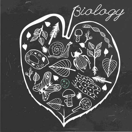 naturalist: Hand drawn biology pattern on a dark gray textured background. Editable vector illustration. Scientific creative concept. Biology text-book cover idea.