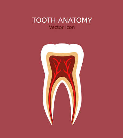 root canal: Tooth icon vector illustration. Medical concept in flat modern style. Editable image in natural colours on a pastel pink background. Logotype or infographics element. Illustration