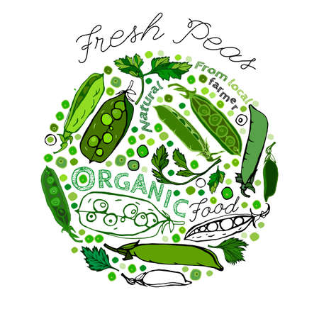 Beautiful handdrawn pattern in bright green colours. Vector illustration with peapods and peas in unique artistic style on a textured background. Natural and organic food creative concept.