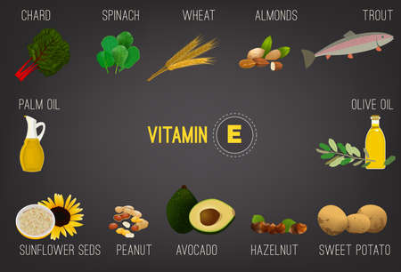 Vitamin E vector illustration. Foods containing vitamin E on a grey background. Source of vitamin E - nuts, corn, vegetables, fish, oils isolated. Medical, healthcare and dietary creative concept. Illustration