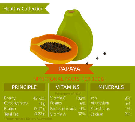 Papaya health benefits. Vector illustration with useful nutritional facts. Essential vitamins and minerals in healthy food. Medical, healthcare and dietory concept. Illustration