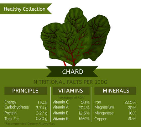 nutritional: Swiss chard health benefits. Vector illustration with useful nutritional facts. Essential vitamins and minerals in healthy food. Medical, healthcare and dietory concept. Illustration