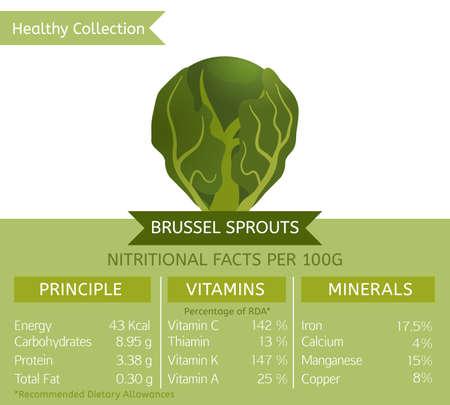 Brussel kiełkuje korzyści. Ilustracji wektorowych z użytecznych faktur odżywczych. Niezbędne witaminy i minerały w zdrowej żywności. Koncepcja medyczna, zdrowotna i dietetyczna. Ilustracje wektorowe