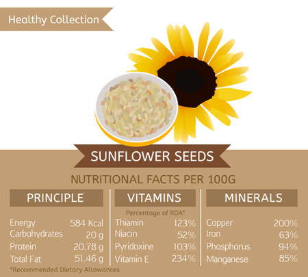 semillas de girasol: Las semillas de girasol beneficios de salud. Vectores