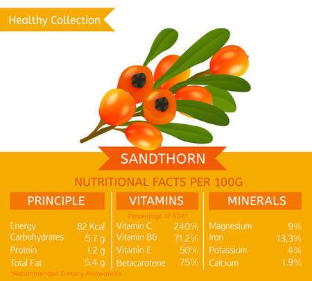 Healthy Collection Image Illustration