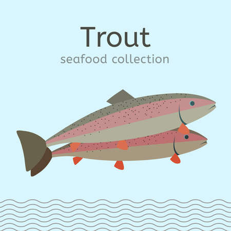 Seafood Collection Image