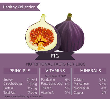 dietology: Fig health benefits. Vector illustration with useful nutritional facts. Essential vitamins and minerals in healthy food. Medical, healthcare and dietory concept.