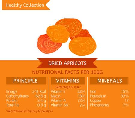 Gedroogde en gehalveerde abrikozen voordelen voor de gezondheid. Vector illustratie met nuttige voedings feiten. Essentiële vitaminen en mineralen in gezond voedsel. Medisch, gezondheidszorg en dieetconcept.