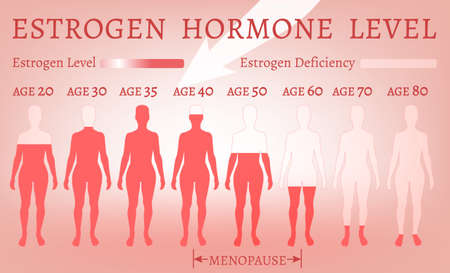 Estrogen Hormone Level in pink tone