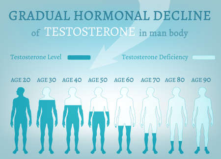 Testosterone Hormone Level illustrated with beautiful medical themed vector Stok Fotoğraf - 83438464