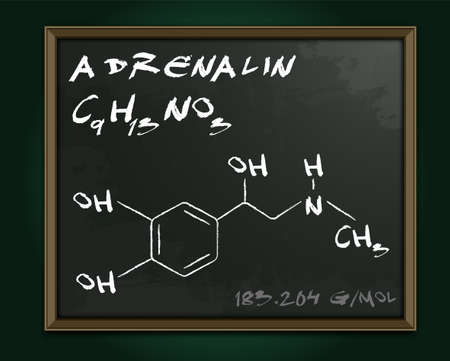 Adrenalin molecule image. Vector illustration in white color handwritten on dark grey background. Chemistry, biology, medicine and healthcare concept with chalk handwriting. Medical class blackboard. 向量圖像