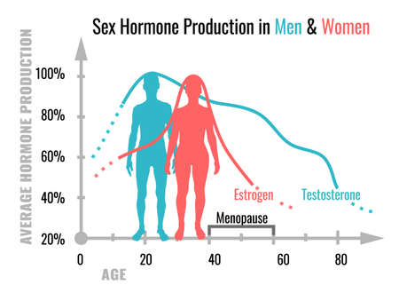 hormone production in men and women. Average percentage from the birth to the age of eighty years. Beautiful vector illustration. Medical infographic useful for educational poster graphic design.