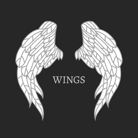 Vector wings image. Beautiful illustration in white and grey color isolated on a dark grey bacckground.