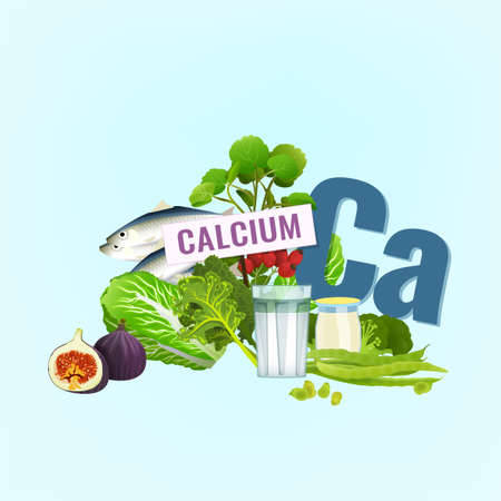 Illustration of top foods rich with Calcium on a light background.