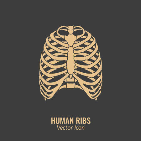 Human ribs icon. Chest image in a flat style. Vector illustration in beige colour isolated on a dark grey background.